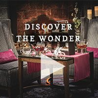 Discover the wonder video 2.jpg